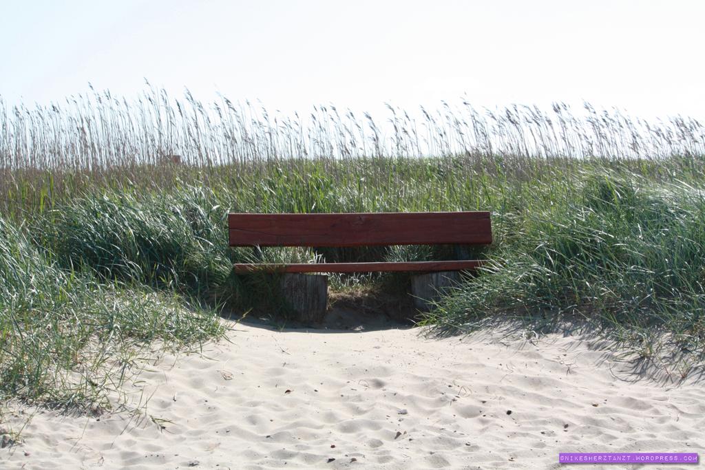 amrum, nordsee, insel, meer, schleswig-holstein, strand, bank, nikesherztanzt