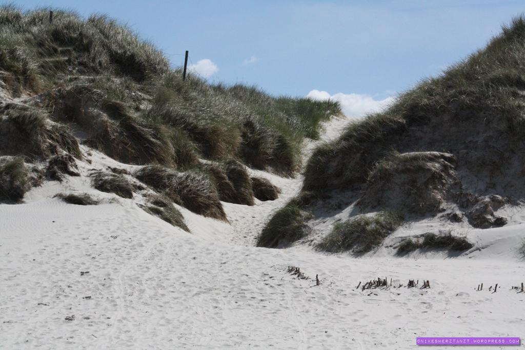 amrum, nordsee, wattenmeer, schleswig holstein, insel, dünen, strand, sand, himmelblau, sonne, nikesherztanzt