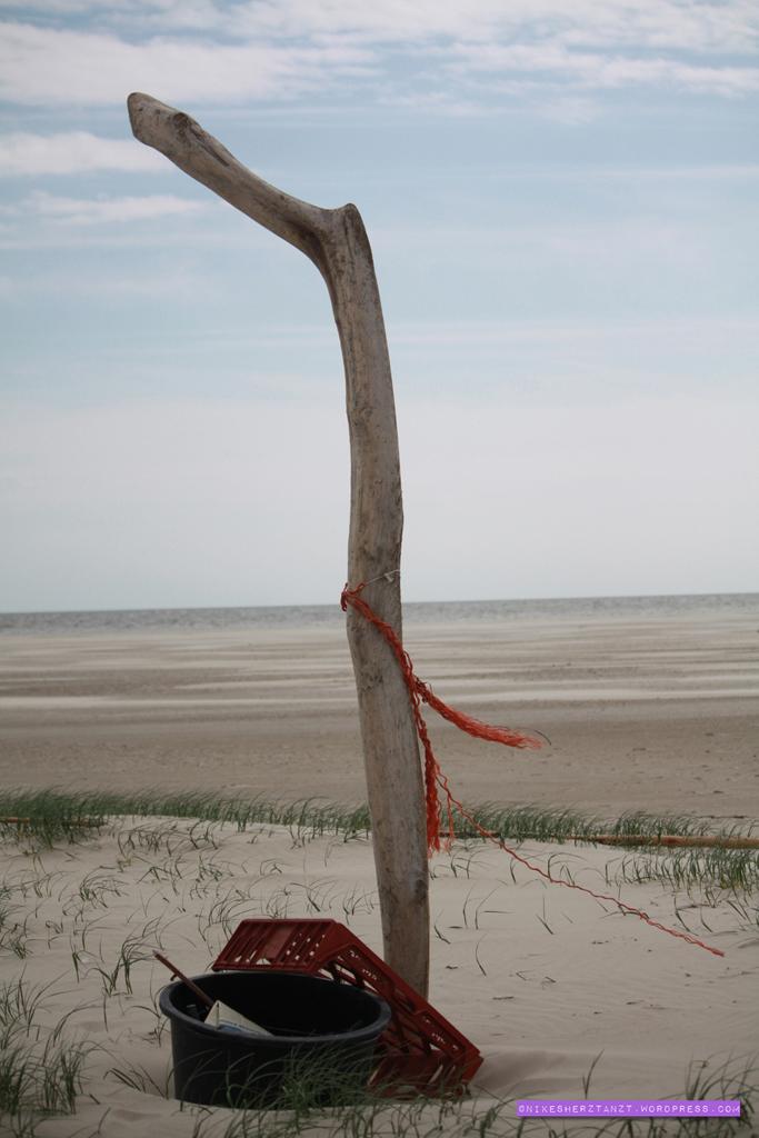 amrum, nordsee, wattenmeer, insel, meer, schleswig-holstein, strandgut, kniep, strand, sand, dünen, nikesherztanzt