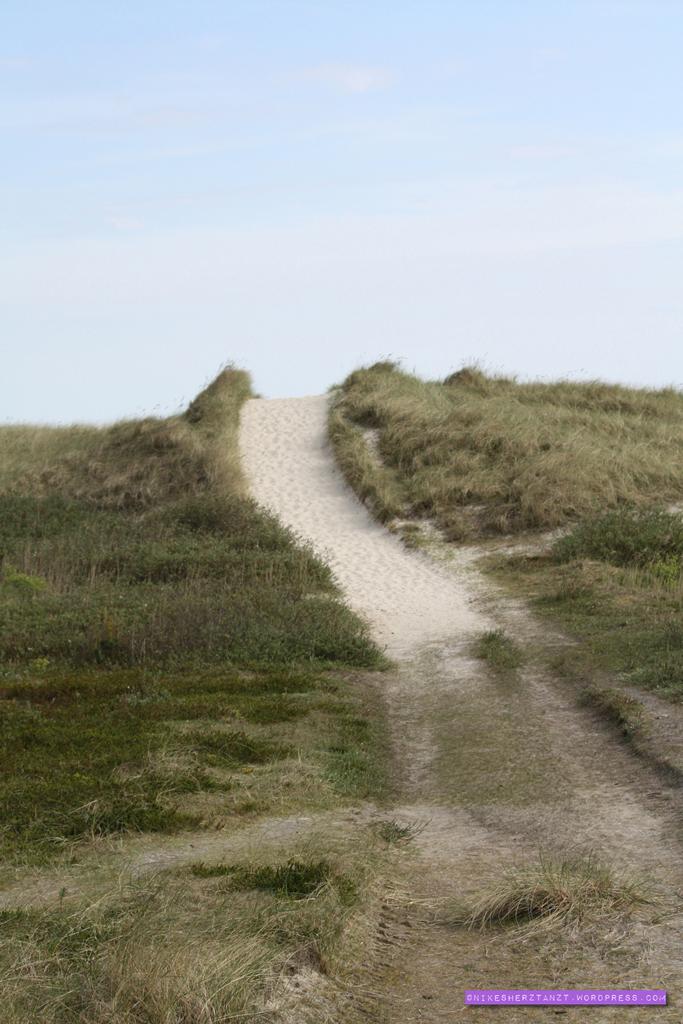 amrum, nordsee, wattenmeer, insel, meer, schleswig-holstein, hallige, kniep, strand, sand, dünen, nikesherztanzt