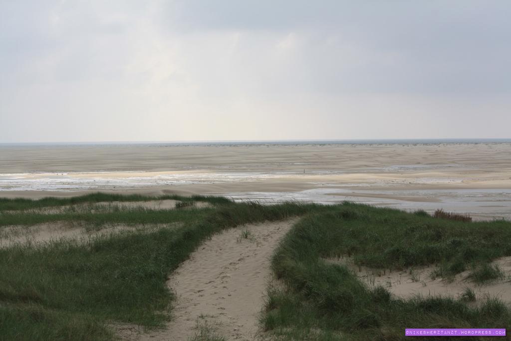 amrum, nordsee, insel, meer, schleswig-holstein, kniep, sand, strand, dünen, nikesherztanzt