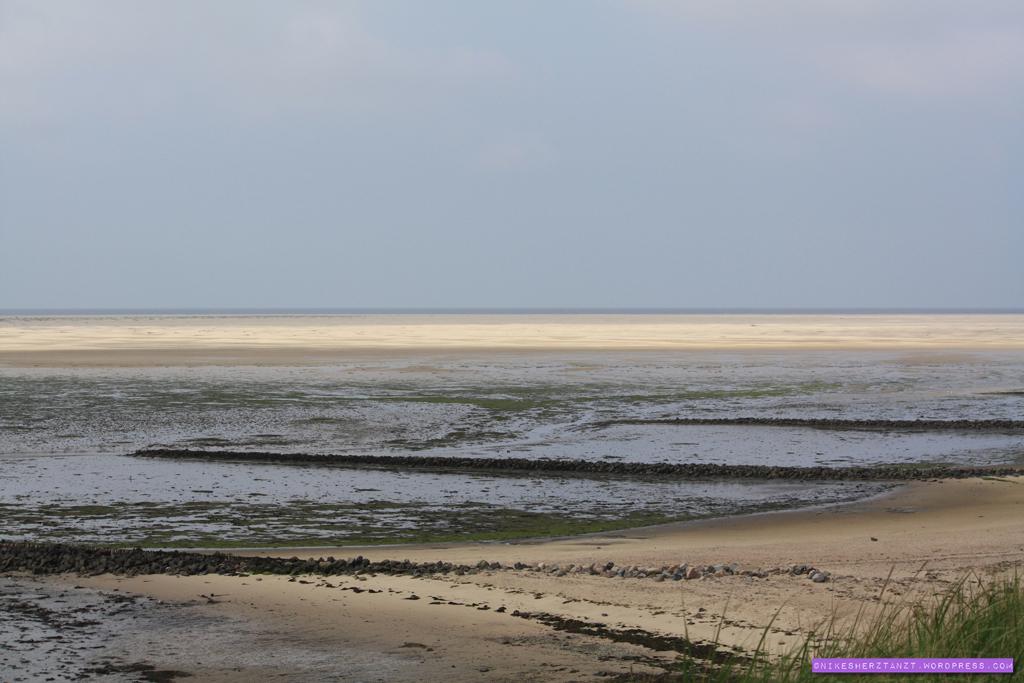 amrum, nordsee, insel, meer, schleswig-holstein, wandelbahn, kniep, sand, strand, nikesherztanzt