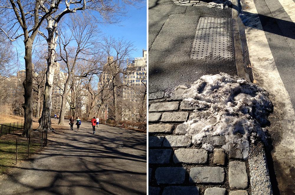 nyc_day4_centralpark2