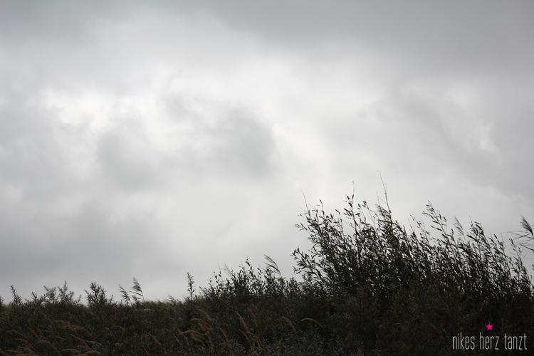 seaside_003