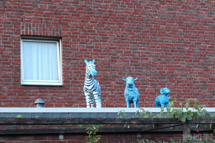 tiger & turtle am abend. // www.nikesherztanzt.de