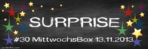 wpid-Surprise-2013-11-7-07-001