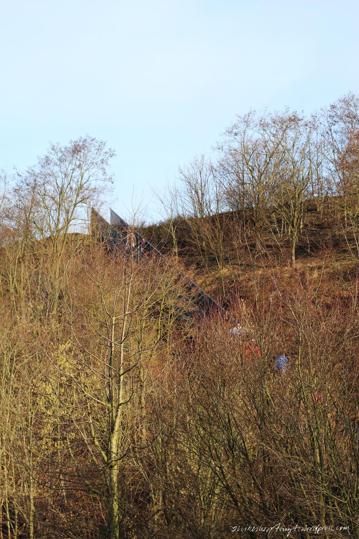 himmelstreppe, halde norddeutschland, neukirchen-vlyn, sonnenschein, himmelblau, eye of the tiger