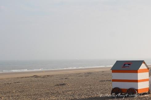 morgens am strand von wenduine, nordsee, belgien,