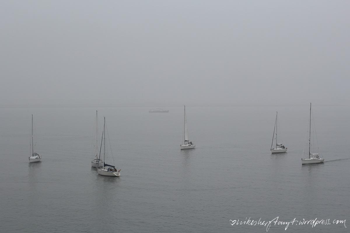 boote im nebel, zeeland, holland, niederlande, nordsee, meer, roadtrip