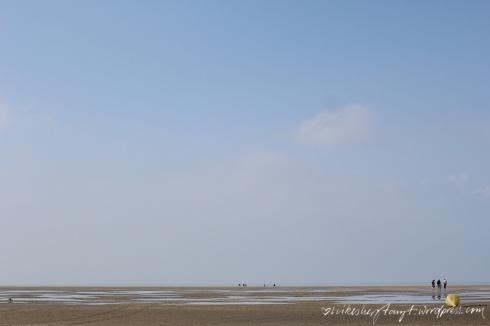 strandleben, surfer, zeeland, holland, brouwersdam,niederlande, nordsee, meer, roadtrip