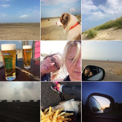 happy pills, life is still good, glücklichmacher, krefeld, köln, holland