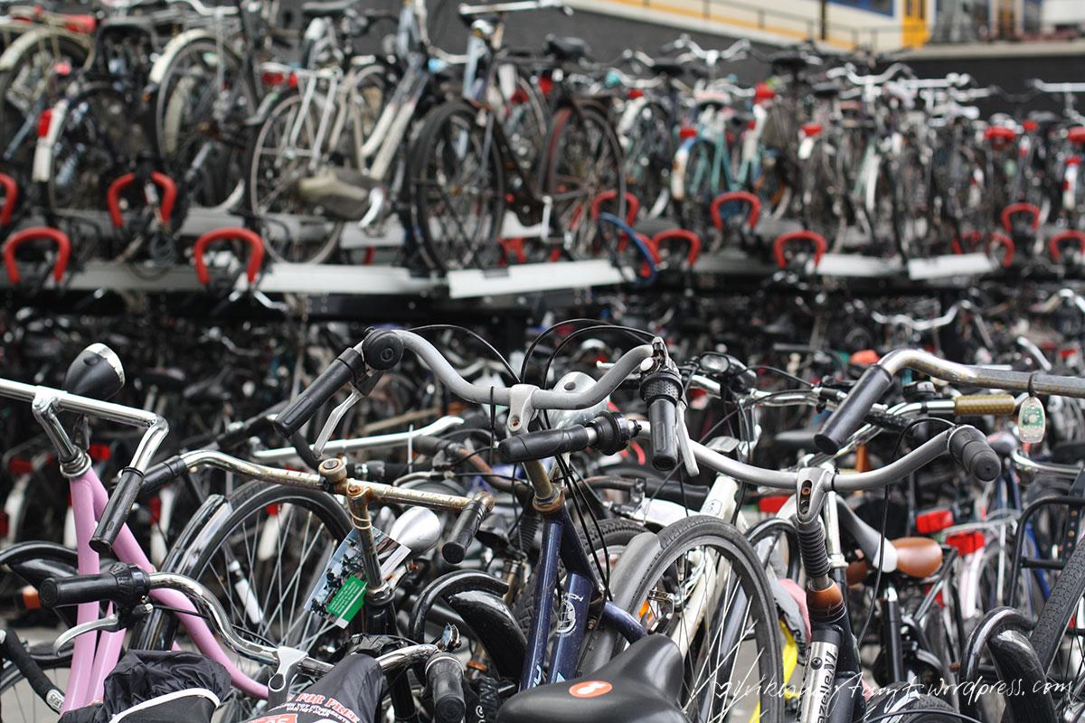 rotterdam , roadtrip, bikes, fietsen, fahrräder, städtetrip, nikesherztanzt