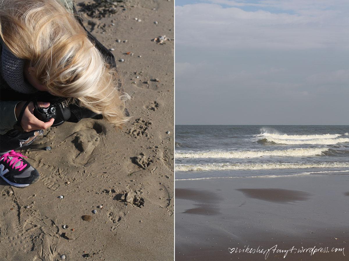 noordwijk, nordsee, nordzee, meer, strand, beach, holland, niederlande, netherlands, wind, sturm, sonne, nikesherztanzt