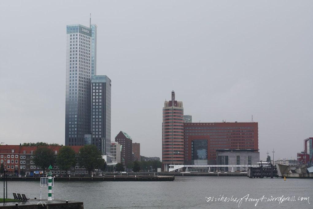 rotterdam2_nikesherztanzt02rotterdam, erasmusbrücke, travel, netherlands, holland,nikesherztanzt