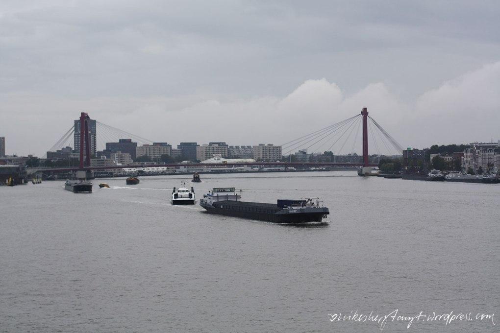 rotterdam, erasmusbrücke, travel, netherlands, holland, nikesherztanzt