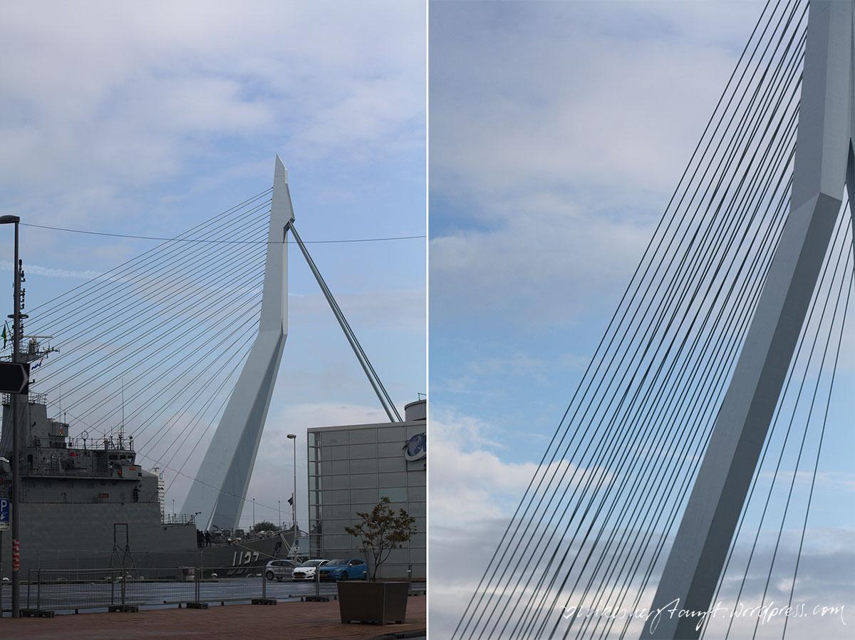 rotterdam2_nikesherztanzt12rotterdam, erasmusbrücke, travel, netherlands, holland, nikesherztanzt