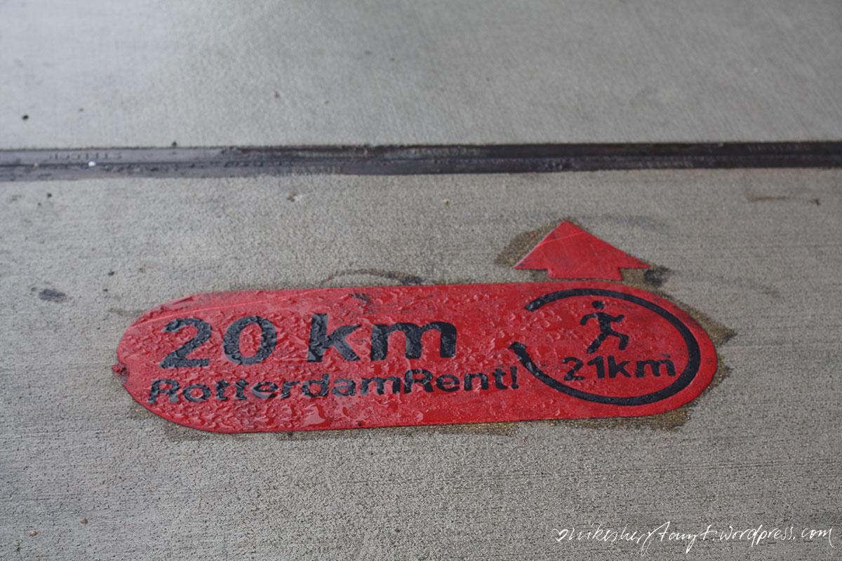 rotterdam2_nikesherztanzt16rotterdam, erasmusbrücke, travel, netherlands, holland, nikesherztanzt